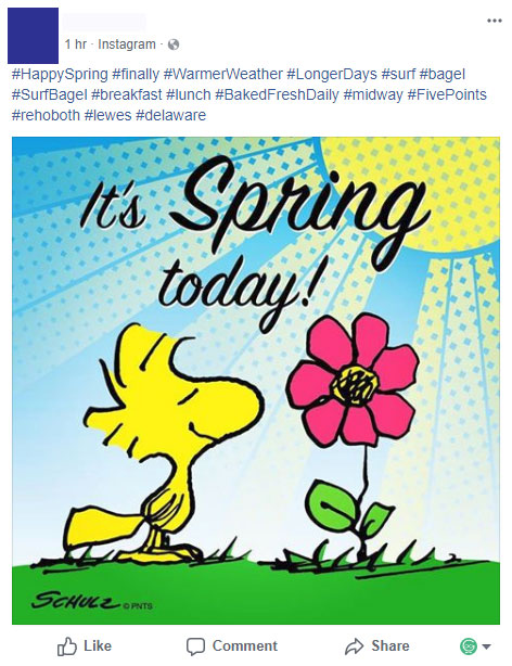 It's Spring Time on Facebook