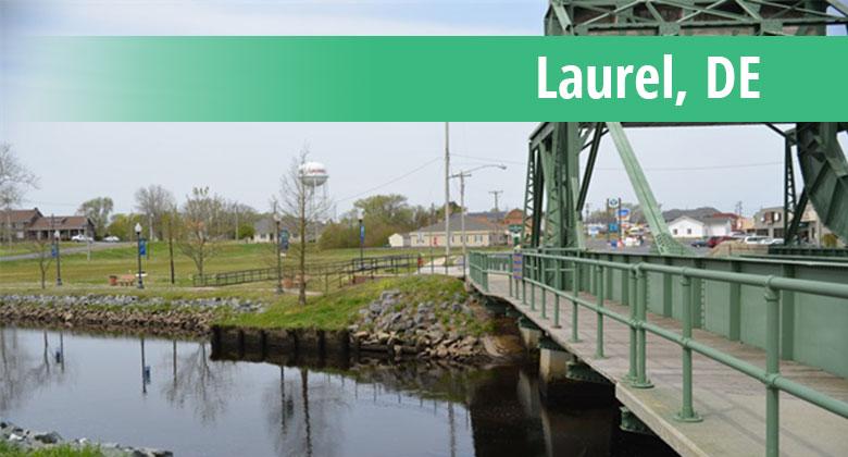 Web Design in Laurel, DE