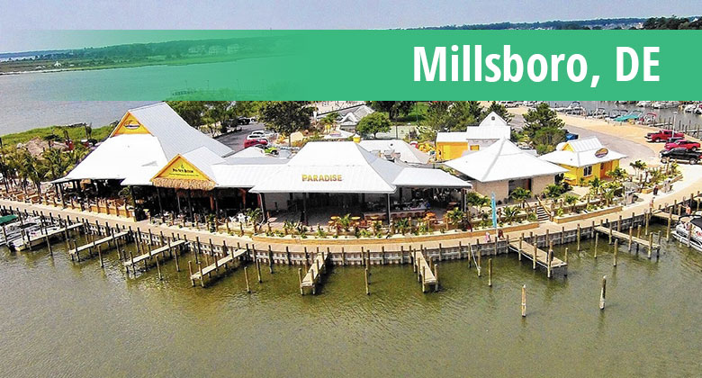 Web Design in Millsboro, DE