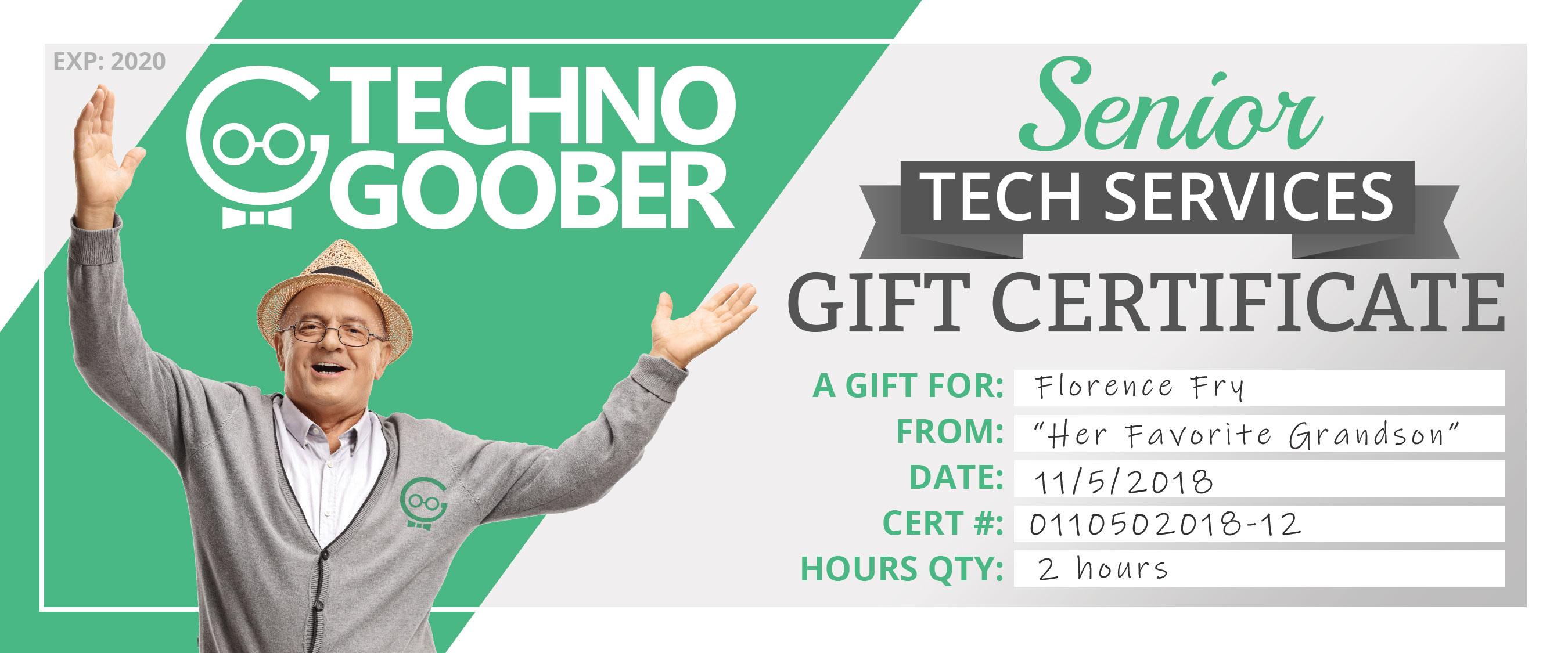 Senior Tech Services